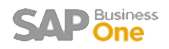 Blue Ocean Systems SAP Business One